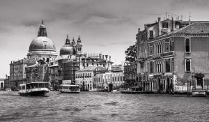 Venice best photographer